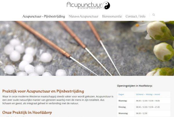 Portfolio Acupunctuur Hoofddorp